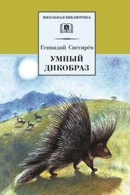 Умный дикобраз (сборник)