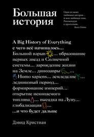 Большая история - Дэвид Кристиан