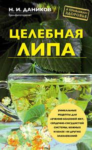 Целебная липа - Николай Даников