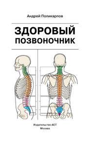 Здоровый позвоночник - Андрей Поликарпов