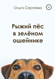 Рыжий пёс в зелёном ошейнике