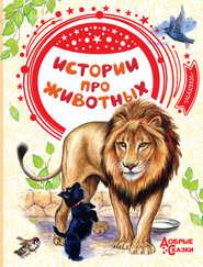Истории про животных