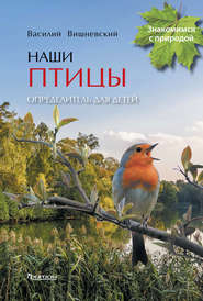 Наши птицы. Определитель для детей