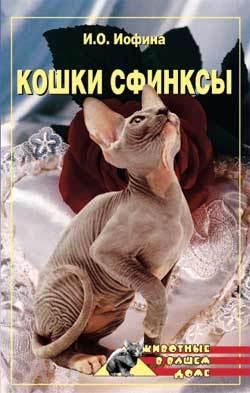 быстрое скачивание Дарья Нестерова читать онлайн