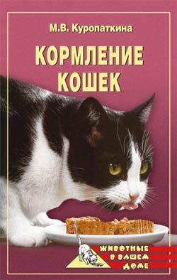 напряженная интрига в книге Марина Куропаткина