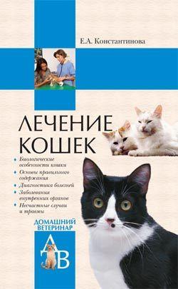 просто скачать Екатерина Константинова бесплатная книга