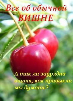 Иван Дубровин Все об обычной вишне