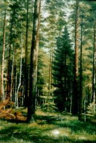 Иван Дубровин Лес – кормилец как продать лес в китай