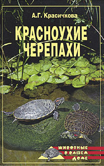 Анастасия Красичкова бесплатно