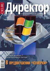 системы, Открытые  - Директор информационной службы №08/2009