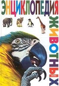Отсутствует - Энциклопедия животных