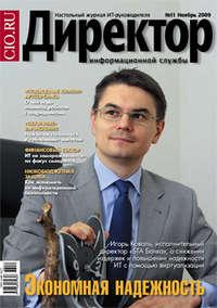 системы, Открытые  - Директор информационной службы /2009
