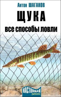 Антон Шаганов