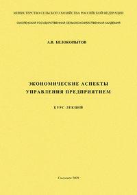 - Экономические аспекты управления предприятием: курс лекций