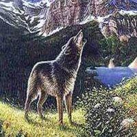 Лев Толстой Волк