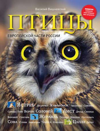 Василий Алексеевич Вишневский Птицы Европейской части России сувениры рнтойс гнездо с яйцами