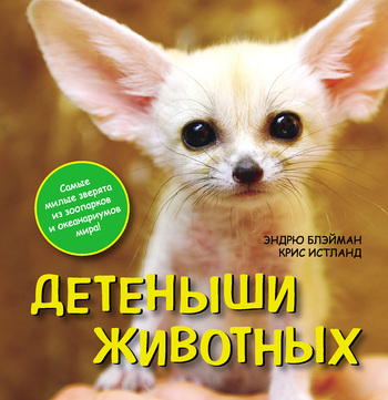 Скачать книгу Крис Истланд, Детеныши животных