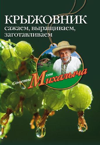 Скачать книгу Крыжовник. Сажаем, выращиваем, заготавливаем  автор Николай Михайлович Звонарев