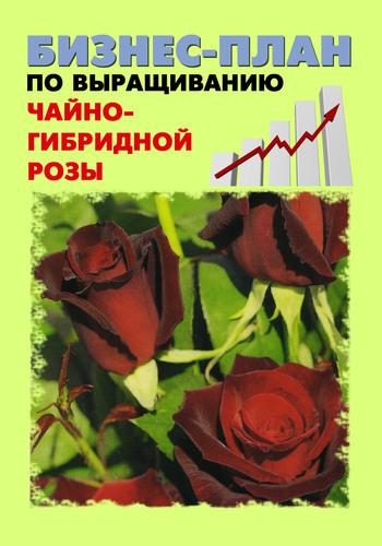 А. С. Бруйло Бизнес-план по выращиванию чайно-гибридной розы