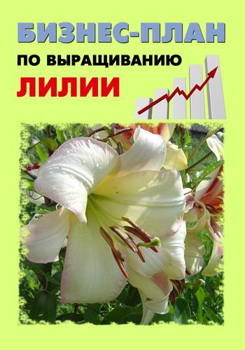 Павел Шешко Бизнес-план по выращиванию лилии