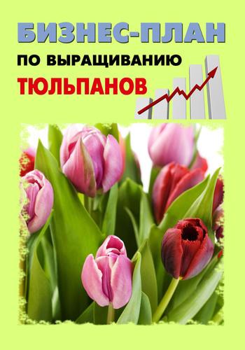 А. С. Бруйло Бизнес-план по выращиванию тюльпанов