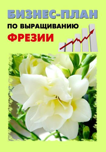 А. С. Бруйло Бизнес-план по выращиванию фрезии