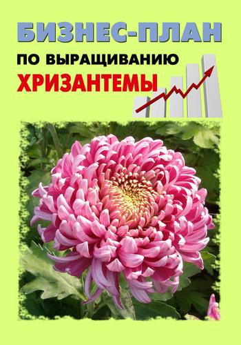 А. С. Бруйло Бизнес-план по выращиванию хризантемы