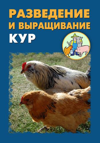 Илья Мельников Разведение и выращивание кур paddington takes the test