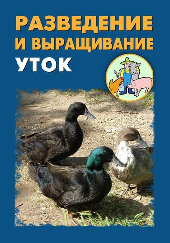 Илья Мельников Разведение и выращивание уток