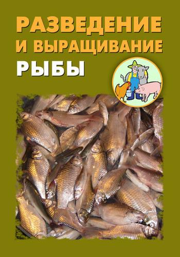Илья Мельников Разведение и выращивание рыбы