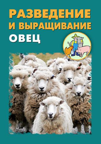 Разведение и выращивание овец ( Илья Мельников  )