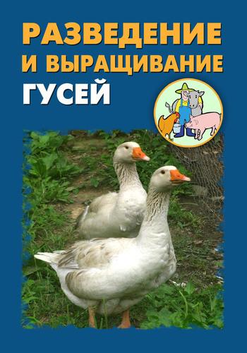 Илья Мельников - Разведение и выращивание гусей