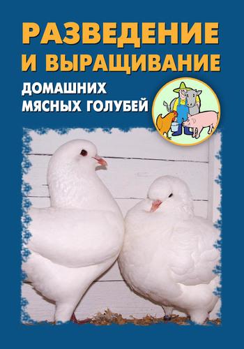 Илья Мельников - Разведение и выращивание домашних мясных голубей