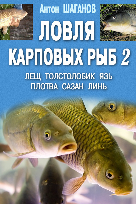обложка книги static/bookimages/04/68/94/04689495.bin.dir/04689495.cover.jpg