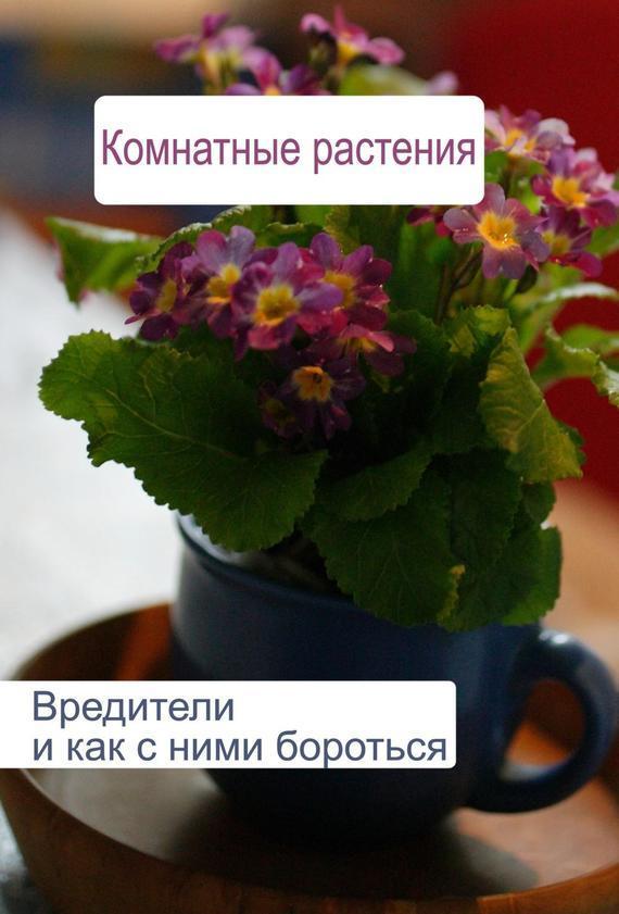 Илья Мельников Комнатные растения. Вредители и как с ними бороться защита растений