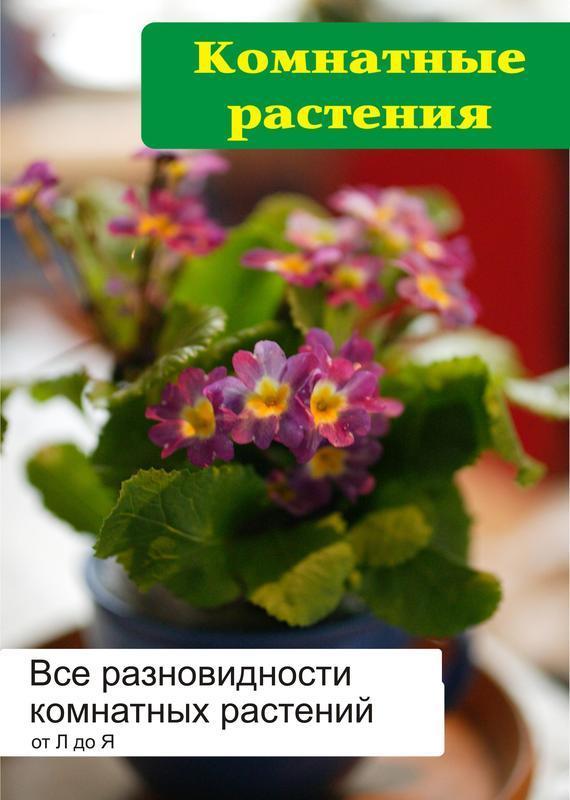 Илья Мельников Все разновидности комнатных растений (от Л до Я)