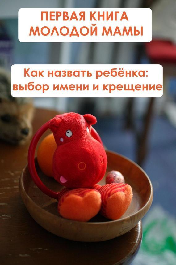 напряженная интрига в книге Илья Мельников
