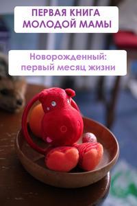 Мельников, Илья  - Новорождённый: первый месяц жизни