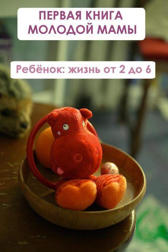 Илья Мельников Ребёнок: жизнь от двух до 6