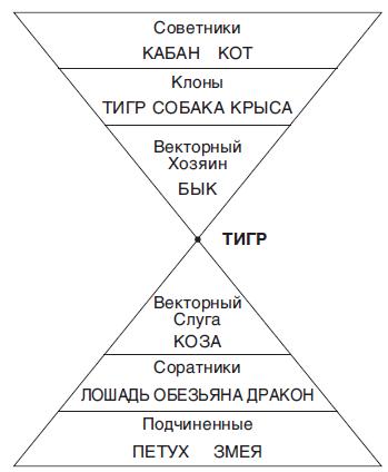 Деловая Пирамида Для Змеи. Как выстроить коллектив.