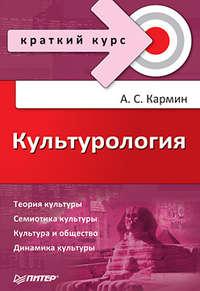 Кармин, Анатолий Соломонович  - Культурология. Краткий курс