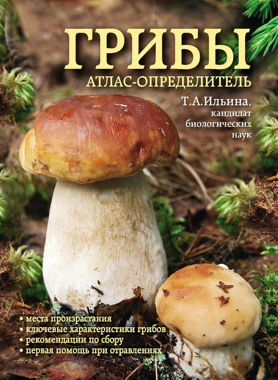 Татьяна Ильина Грибы. Атлас-определитель татьяна ильина грибы атлас определитель