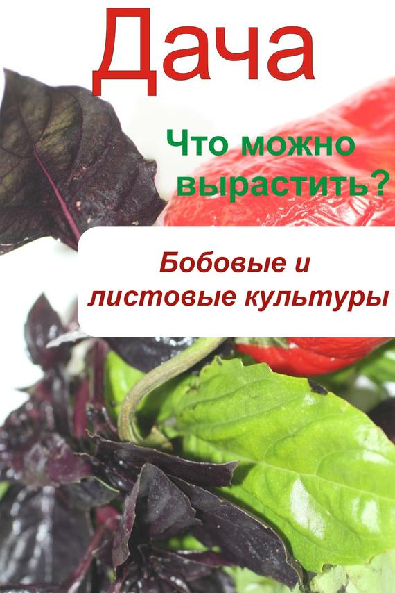 Скачать Автор не указан бесплатно Что можно вырастить Огород. Бобовые и листовые культуры