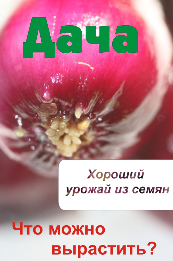 бесплатно Что можно вырастить Хороший урожай из семян Скачать Автор не указан