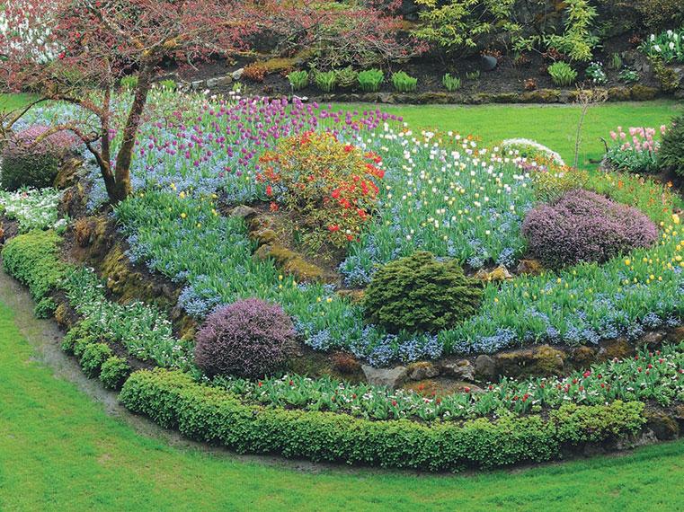 Скачать книгу сад непрерывного цветения
