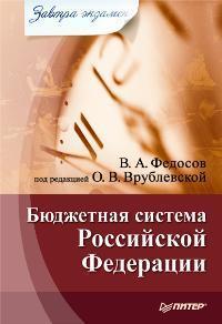 Виталий Федосов - Бюджетная система Российской Федерации