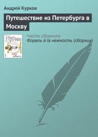 - Путешествие из Петербурга в Москву