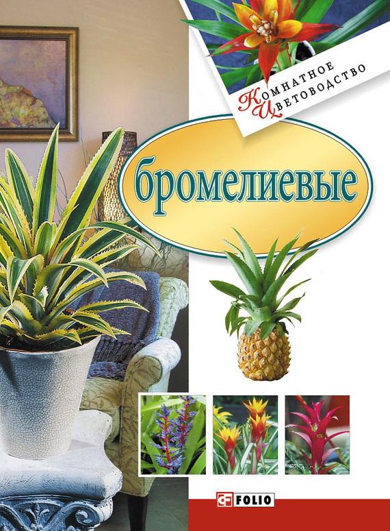 Сборник Бромелиевые наборы для выращивания растений вырасти дерево набор для выращивания ель канадская голубая