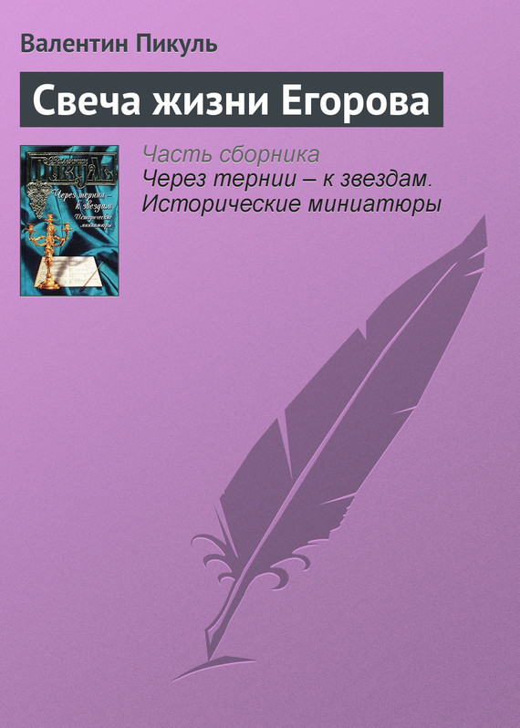 Свеча жизни Егорова LitRes.ru 19.000