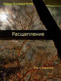 Соколов, Илья  - Расщепление